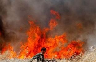 حرائق واسعة وإغلاق طرق.. وسلطات إسرائيل تجلي عشرات الأسر