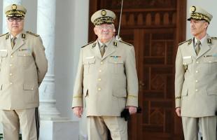 رئيس الأركان الجزائري: البلاد في انتظار مخرج دستوري للأزمة