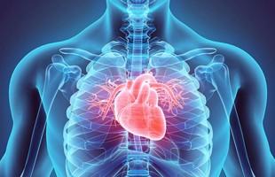 امراض القلب تصيب الرجال الارامل والمطلقين بمقتل أكثر من النساء