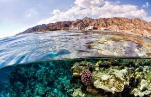 مزايا رائعة وراء فوز دهب المصرية بأفضل شواطئ الشرق الأوسط