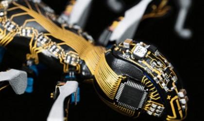روبوت يحاكي عمل النمل.. ما الفائدة منه؟
