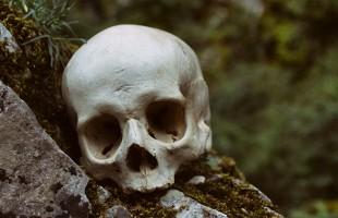 سر عمره 210 آلاف عام قد يعيد التفكير في أصول الجنس البشري