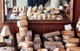 دراسة: هل يمكن أن يكون تناول الجبن مفتاحًا لحياة أطول؟