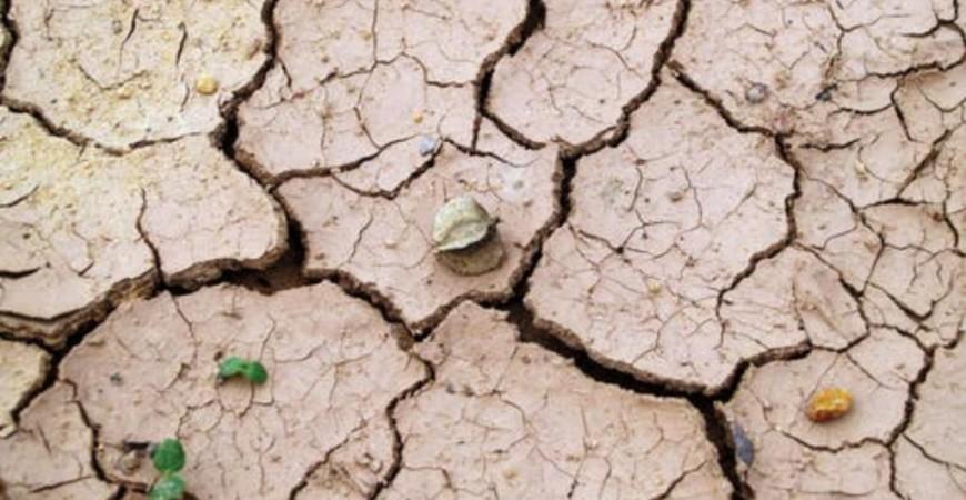 تدهور حالة الأرض يدفع الملايين من البشر سنوريا إلى هجرة أوطانهم (بيكسلز)