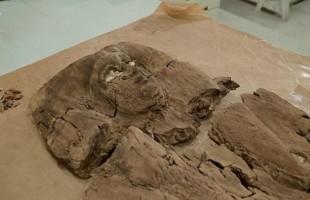 تجميع وجه أميرة فرعونية عاشت قبل 4000 عام لأول مرة.. هل يعود لـ حتشبثوت؟   (صور)